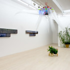 NETWORKED NATURE-INSTALLATION VIEW